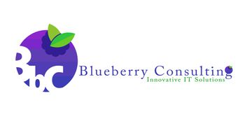 Blueberry Consulting 360x180